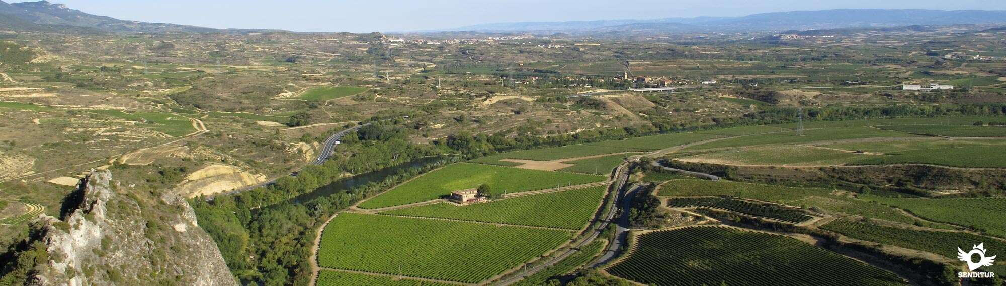 Wine Route of La Rioja Alta