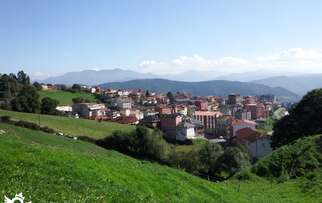 See accommodation in Tineo