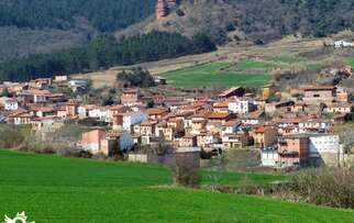 See things to do in San Millán de la Cogolla