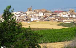 See things to do in Cirauqui - Zirauki