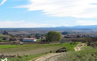 See things to do in Atapuerca
