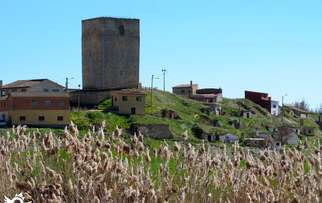 See things to do in Itero del Castillo