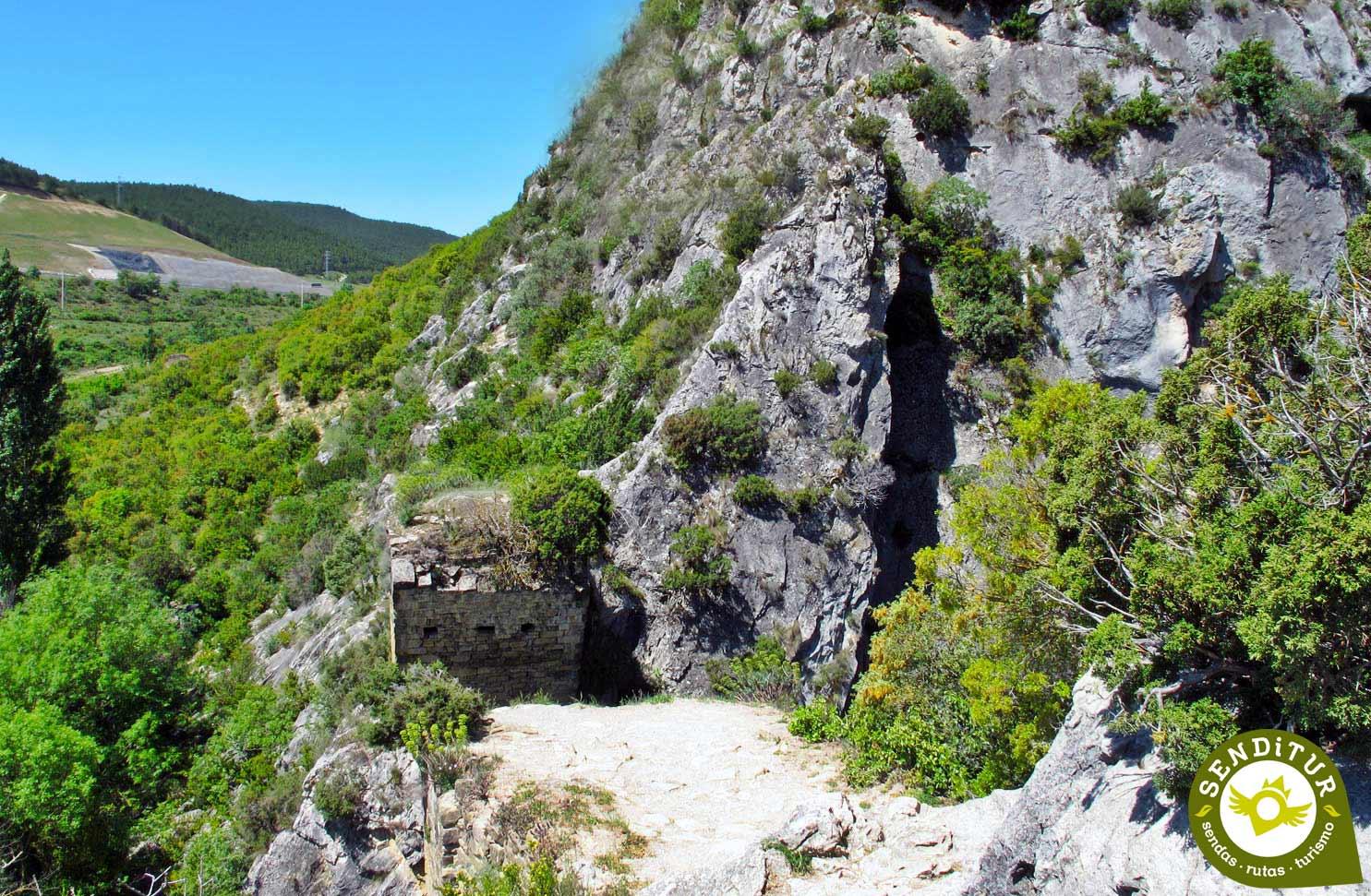 ¿Qué es la Selva de Irati?
