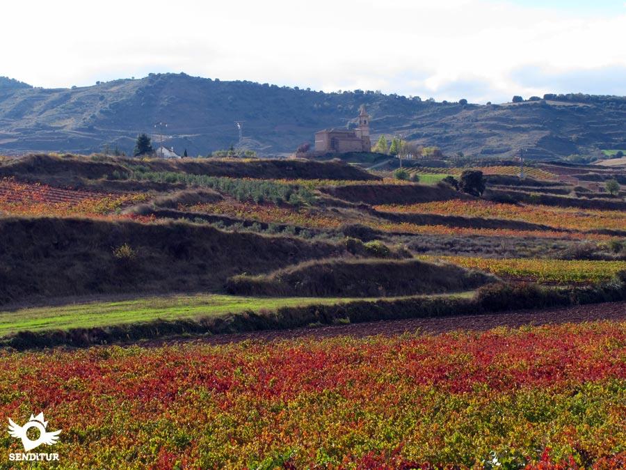 Ventosa, La Rioja | French Way | Way of Saint James