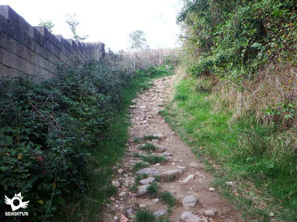 The paved and steep trail shortens our route