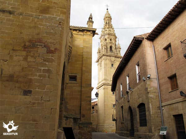 Stage 9 Santo Domingo de la Calzada-Belorado Way of Saint James French Way