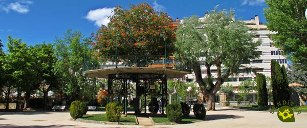 The Music Tree in Soria