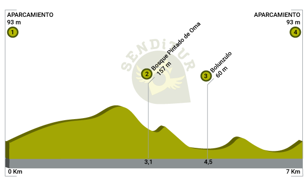 Profile of the route Painted Forest of Oma