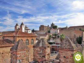 Go to Walk through the Medieval Cáceres