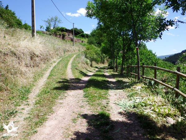 Road to the recreational area