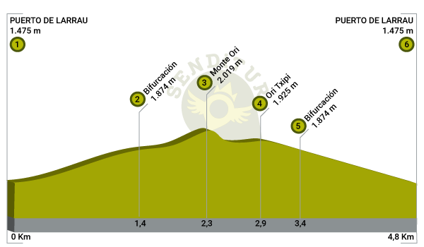 Profile of the route Mount Ori from the col of Larrau