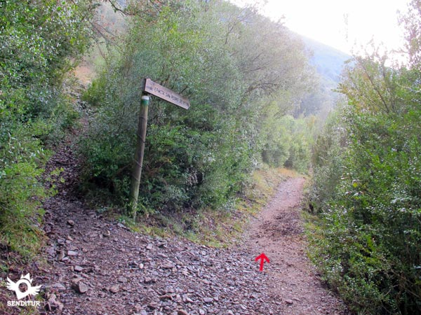 We continue along the trail that runs parallel to the river